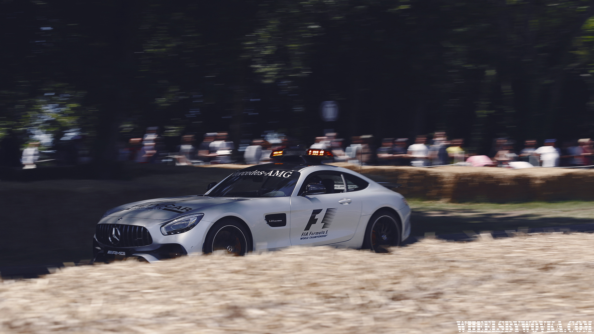 goodwood-festival-of-speed-2017-fos-by-wheelsbywovka-16